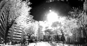 Black_white_by_binarymind
