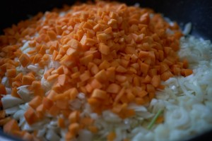carrots, oignons